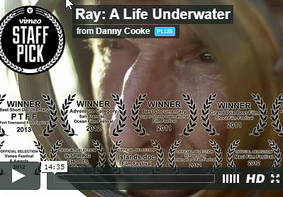 Ray: A Life Underwater