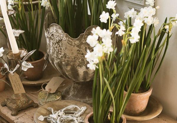 Yay spring………………..