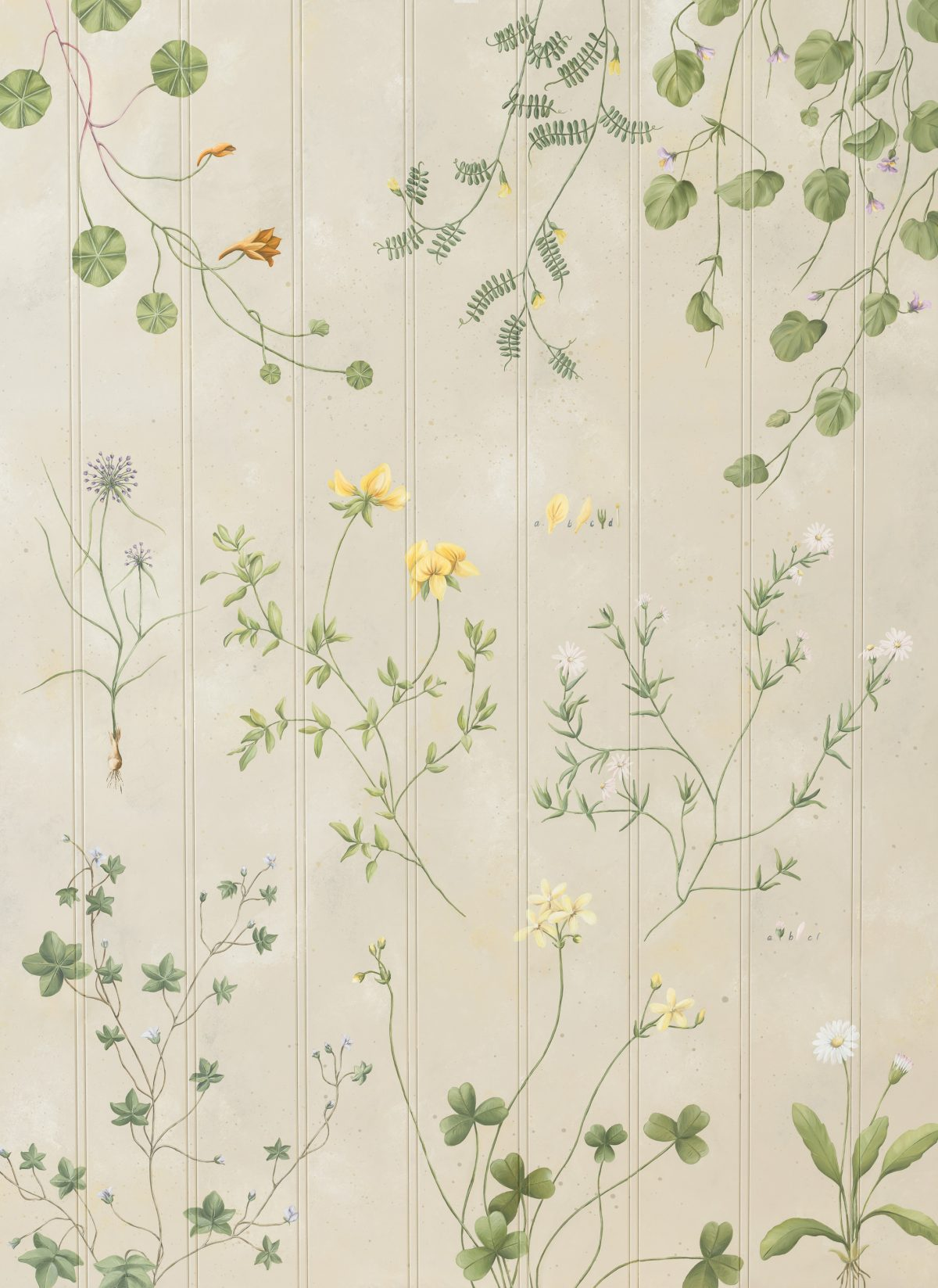 Soft suggestions of colour and the prettiest little flowers - we took inspiration from old botanical books here.