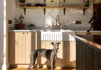 Sunshine and the coolest kitchen in Kew