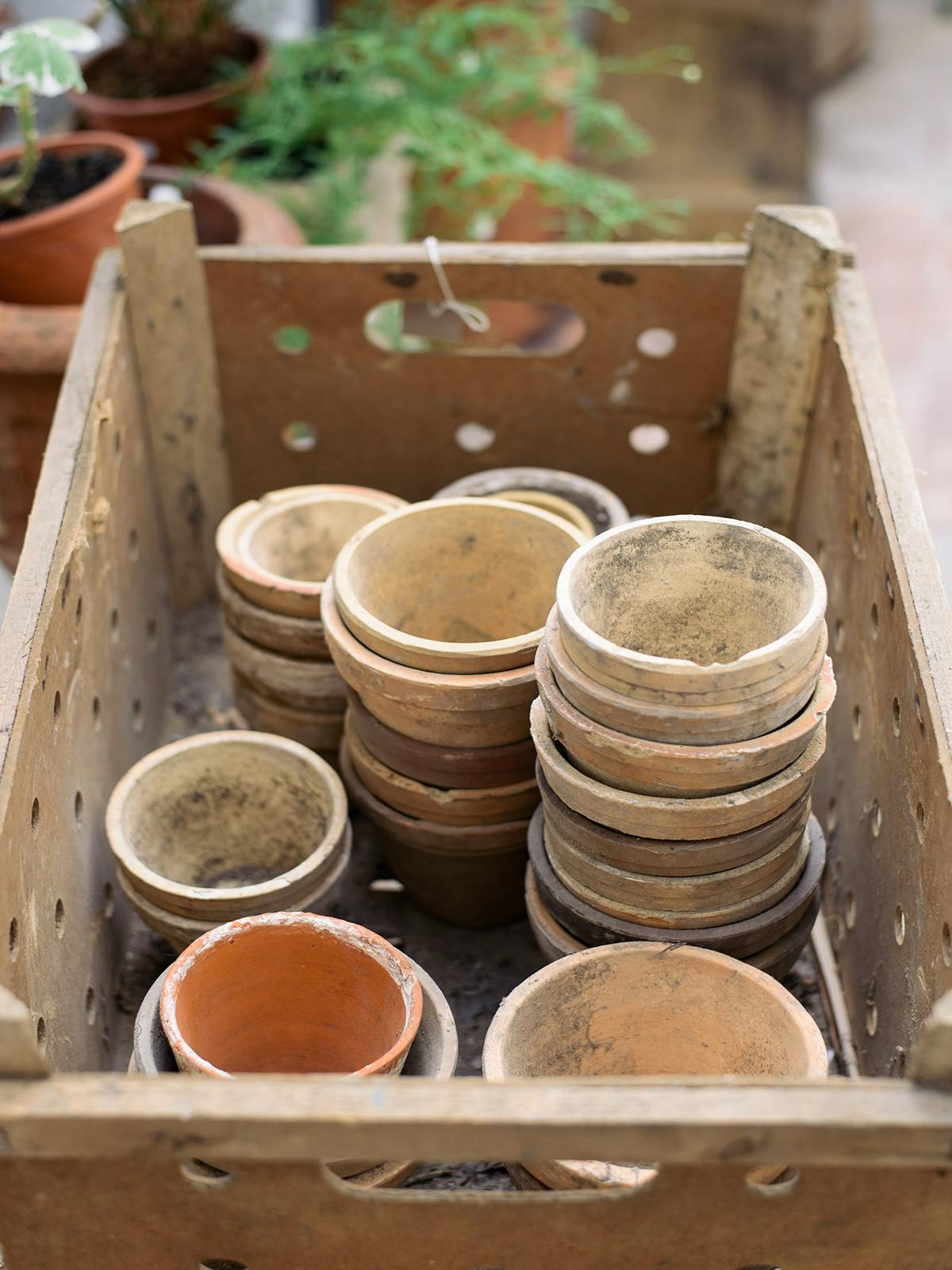 Terracotta Pots photo 1